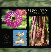 Lyrical Space: Poetry and Art